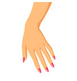 woman hand vector image