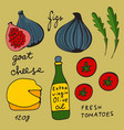 colorful set of figs and goat cheese salad vector image