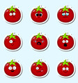 cartoon tomato cute character face sticker vector image vector image