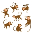 Chinese New Year 2016 monkeys decoration icon vector image vector image