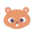cute beaver animal face cartoon isolated design vector image vector image