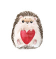 holiday card with hedgehog vector image vector image