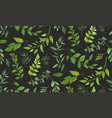 seamless pattern eucalyptus palm leaf fern vector image vector image