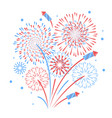holiday firework independence day of america vector image