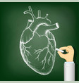 human heart drawing on a blackboard health vector image vector image