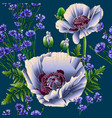 poppies and cornflowers seamless vector image vector image