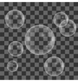 Set of Transparent Soap Water Bubbles vector image