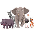 wild animals with happy face vector image vector image