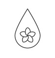 aromatherapy oil drop linear icon vector image vector image