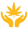 Cannabis Care Icon vector image