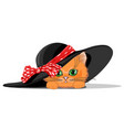 cat in hat with bow vector image vector image