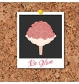 corkboard with instant photo card and vector image