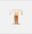 silver and gold font symbol alphabet letter t vector image