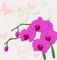 twig blossoming orchids vector image