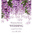wedding invitation card with wisteria flowers vector image vector image