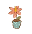 Beautiful house plant in vase vector image vector image