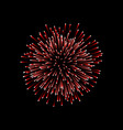 beautiful red firework couple romantic salute vector image vector image