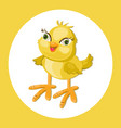 cute chicken funny cartoon vector image