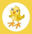 cute chicken funny cartoon vector image vector image
