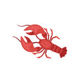 lobster with bright red shell and long antennae vector image