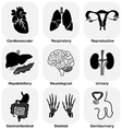 Collection of internal organ