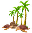 isolated picture sea turtles and tree vector image vector image