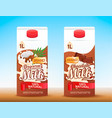 set of 2 milk tetra packs with different tastes vector image vector image