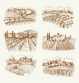 vineyard landscape france or italy vintage vector image vector image