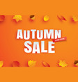 autumn sale with leaves in paper art style on vector image
