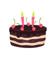 birthday cake with three burning candles and red vector image