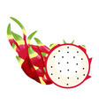 fruit icon dragon fruit white background im vector image vector image