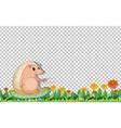 hedgehog cartoon character on transparent vector image