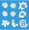 milk splash collection vector image vector image