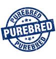 purebred blue round grunge stamp vector image vector image