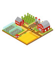 rural 3d farm isometric template with garden vector image vector image
