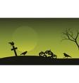 Silhouette of pumpkin and crow in tomb Halloween vector image vector image