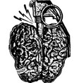danger brain vector image