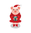 funny a pink pig in a red dress vector image