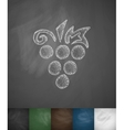 grapes icon Hand drawn vector image vector image