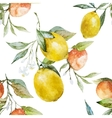 Lemons and oranges vector image vector image
