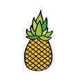 pineapple fresh fruit drawing icon vector image vector image
