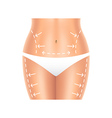 Plastic surgery belly and legs isolated vector image