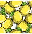 Seamless Pattern Lemons vector image vector image