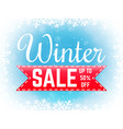 winter sale banner with snowflakes special offer vector image vector image
