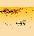 yellow fall leaves vector image vector image