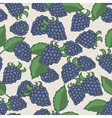 Doodle blackberries seamless pattern vector image