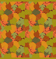 autumn leaves in cartoon style seamless pattern vector image vector image