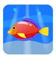 cute tropical fish red color in sea ocean vector image vector image