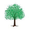 hand drawn tree vector image vector image