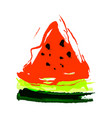 isolated watermelon design vector image vector image